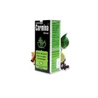 Carmina 450ml Syrup